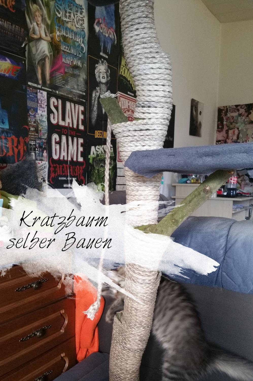 kratzbaum01